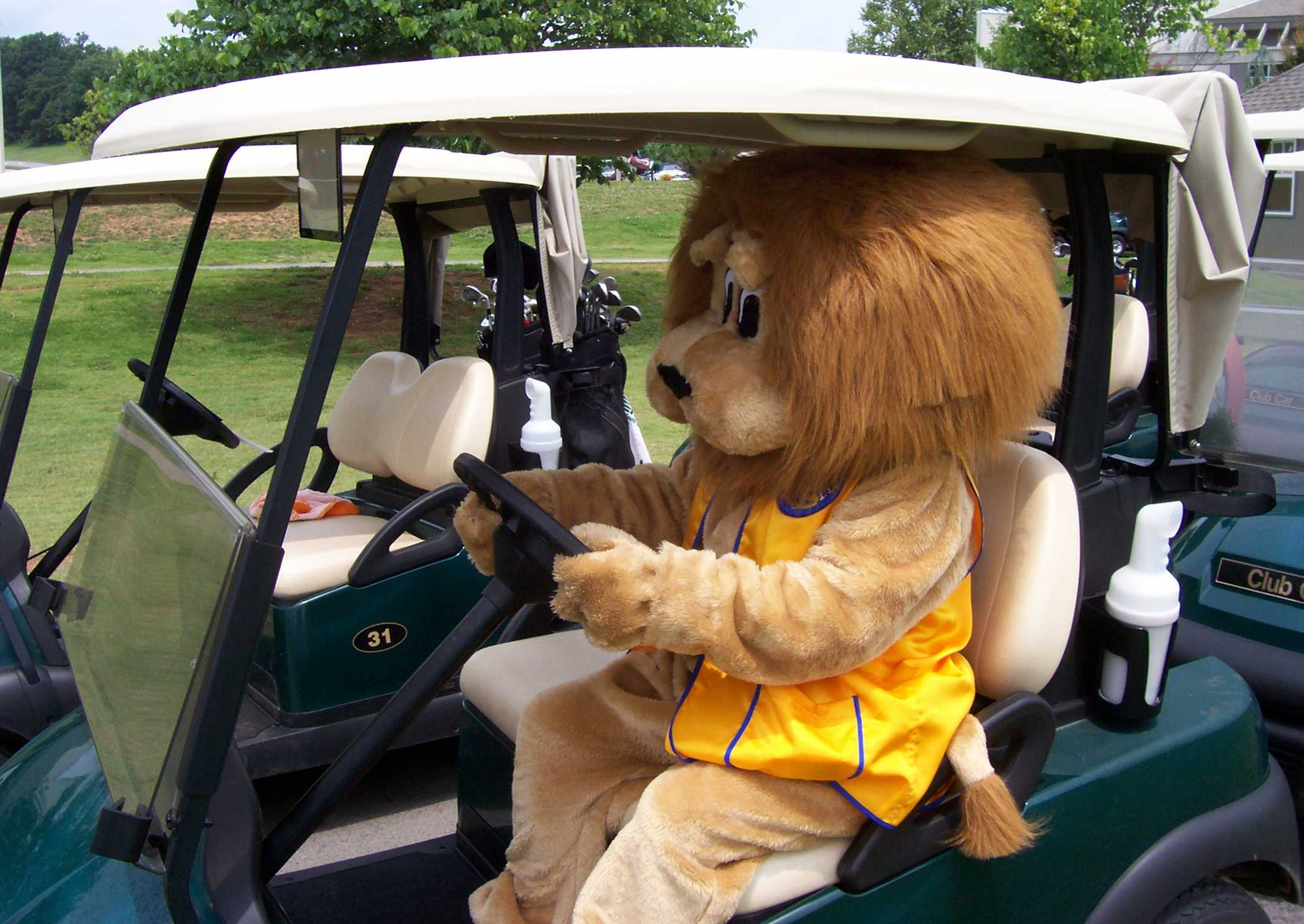 Golf Cart - Ready to Ride!