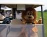 2009-07-11 Karns Golf
