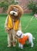 With a Tennessee Vol Fan
