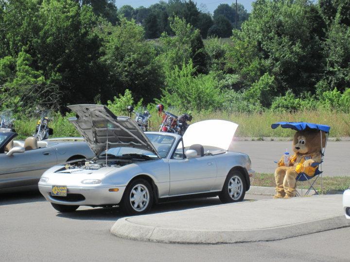 A shady spot by a Lions\' car